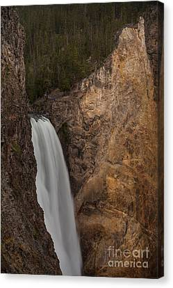 Lower Yellowstone Waterall Canvas Print