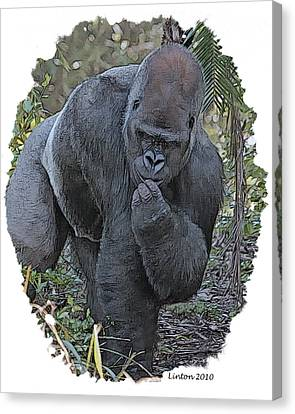 Lowland Silverback Gorilla Canvas Print by Larry Linton