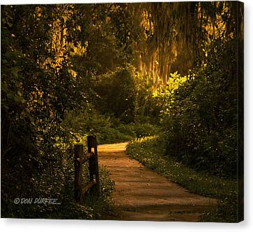 Canvas Print featuring the photograph Loxahatchee Boardwalk by Don Durfee