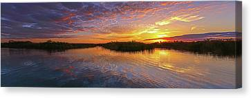 Loxahatchee Sunset Canvas Print by Juergen Roth