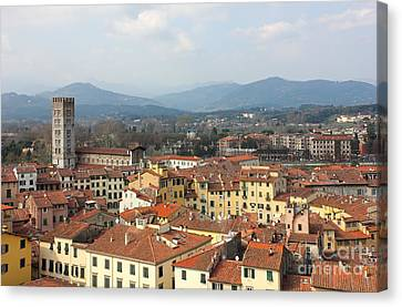 Lucca Aerial Panoramic View With Piazza Dell' Anfiteatro Canvas Print