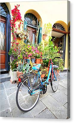 Lucca Canvas Print by Floyd Menezes