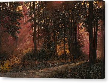Luci Nel Bosco Canvas Print by Guido Borelli