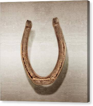 Lucky Horseshoe Canvas Print