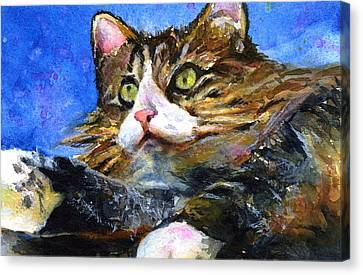 Lucy The Cat Canvas Print by John D Benson