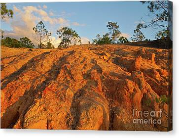 Ludo Red Sands. Algarve Canvas Print by Angelo DeVal
