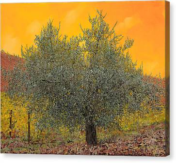 L'ulivo Tra Le Vigne Canvas Print by Guido Borelli