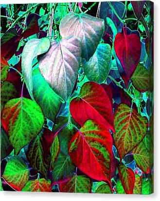 Luminous Lilac Leaves Canvas Print