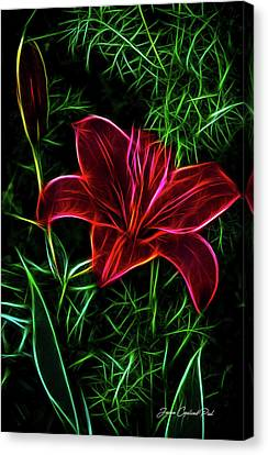 Luminous Lily Canvas Print