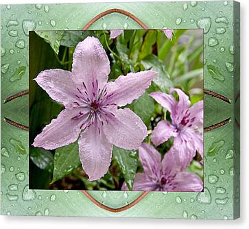 Canvas Print featuring the photograph Luminous Mauve by Bell And Todd