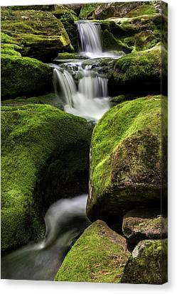 Luminous Triple Falls - Tunxis State Forest   Canvas Print