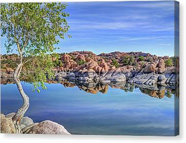 Watson Lake Canvas Print - Lumps Bumps And Curves by Donna Kennedy