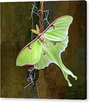 Canvas Print featuring the digital art Luna Moth by Thanh Thuy Nguyen