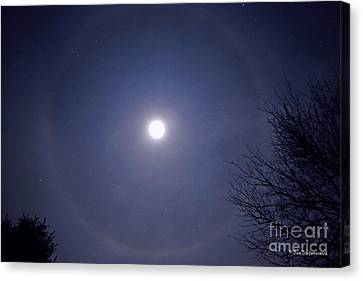 Lunar Corona Canvas Print by Sue Stefanowicz