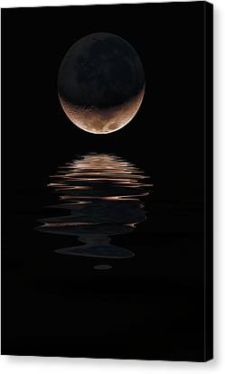 Lunar Dance Canvas Print by Jerry McElroy