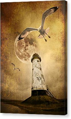 Sea Birds Canvas Print - Lunar Flight by Meirion Matthias