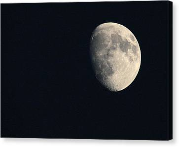 Lunar Surface Canvas Print by Angela Rath