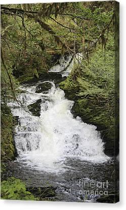Wet Canvas Print - Lunch Creek Waterfall by Carolyn Brown