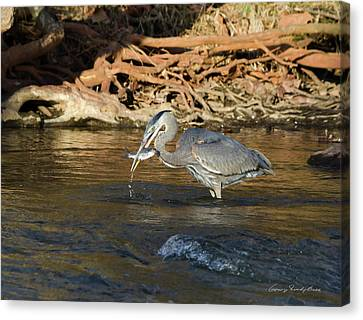 Canvas Print featuring the photograph Lunch On The Neuse River by George Randy Bass