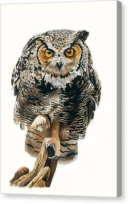 Lunchtime - Great Horned Owl Canvas Print