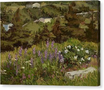 Lupine And Wild Roses Canvas Print by Jane Thorpe