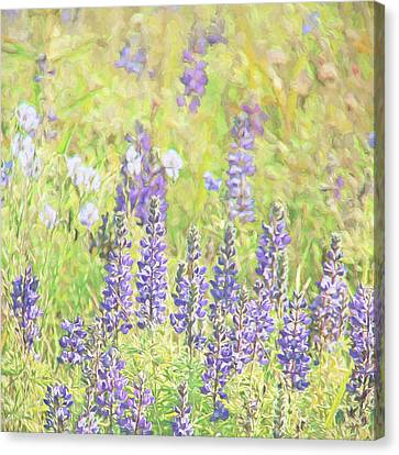 Canvas Print featuring the photograph Lupine Wildflowers Montana by Jennie Marie Schell