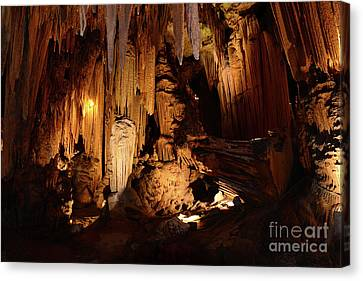 Luray Dark Caverns Canvas Print by Paul Ward