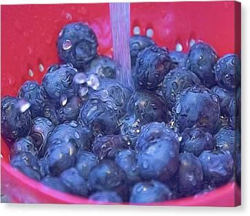 Luscious Berries Canvas Print