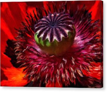 Luscious Red Poppy Art Canvas Print by Georgiana Romanovna