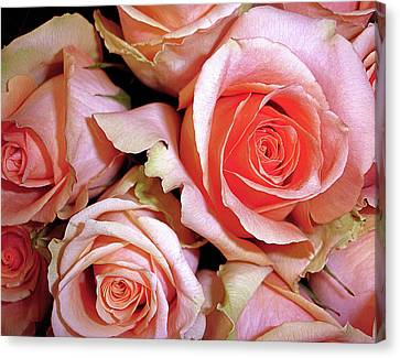 Lush Canvas Print by Lynda Lehmann