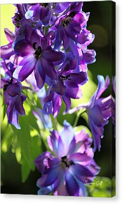Lush Canvas Print by Suzanne Gaff