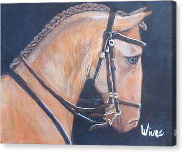 Lusitano Canvas Print by Artes Vives