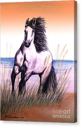 Lusitano Thunder By The Sea Canvas Print by Patricia L Davidson