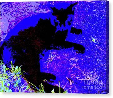 Luxury Cat Canvas Print by Nina Kaye