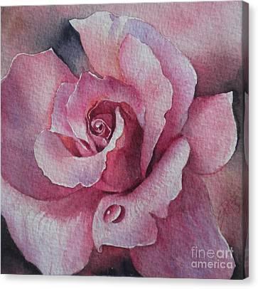 Lyndys Rose Canvas Print