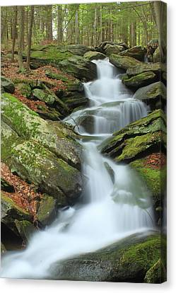 Lynnes Falls New England National Scenic Trai Canvas Print by John Burk