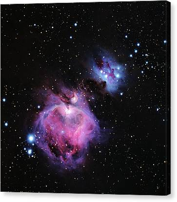 M42--the Great Nebula In Orion Canvas Print