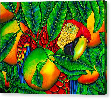 Macaw And Oranges - Exotic Bird Canvas Print by Daniel Jean-Baptiste