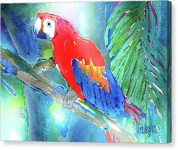Animal Canvas Print - Macaw II by Arline Wagner