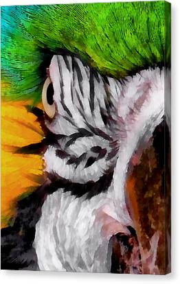 Blue And Gold Macaw Canvas Print - Macaw Upclose 1 by Ernie Echols