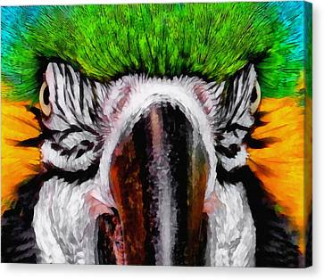 Blue And Gold Macaw Canvas Print - Macaw Upclose by Ernie Echols