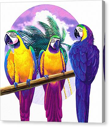 Macaws Canvas Print by Valer Ian
