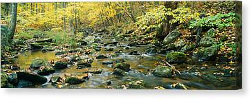 Macedonia Brook State Park, Connecticut Canvas Print