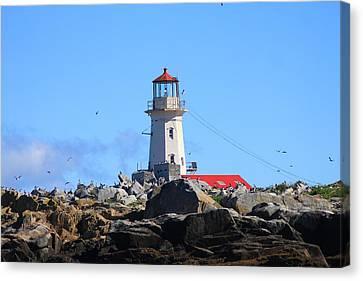 Machias Seal Island Lighthouse Canvas Print by John Burk