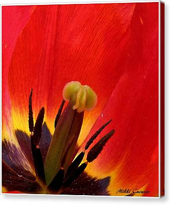 Macro Of Tulip Canvas Print by Mikki Cucuzzo