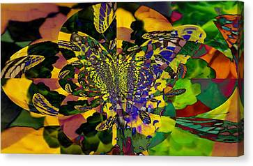 Madam B Fly Canvas Print by Maria  Wall