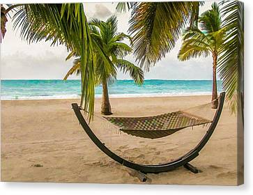 Made In The Shade Canvas Print by Lisa Lemmons-Powers