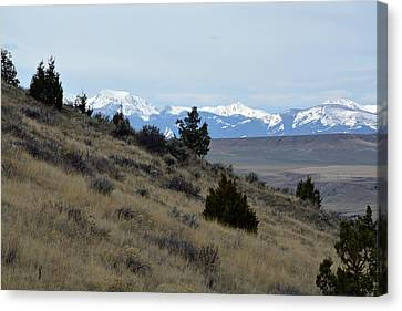 Madison Buffalo Jump State Park In Spring Canvas Print by Bruce Gourley