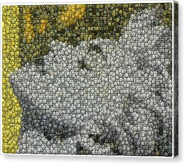Canvas Print featuring the digital art Madonna True Blue Material Girl Coins Mosaic by Paul Van Scott