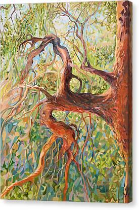 Madrona I Canvas Print